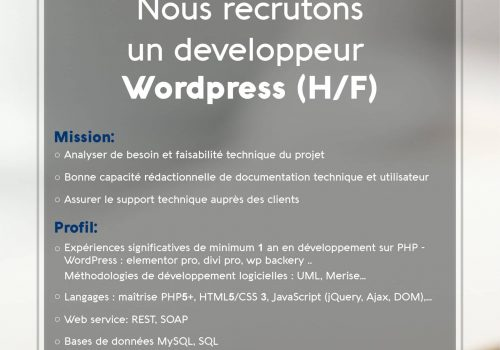 Recrutement Developpeur WordPress-02-01